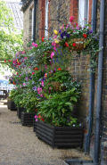 Hanging baskets and flower boxes at Woodbridge station