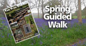Talk * Train * Trail * Tea - Spring Guided Walk