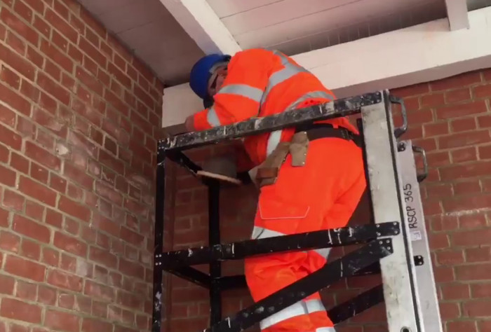 Greater Anglia installing nesting boxes at Woodbridge Station