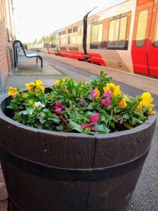 Derby Road flowers 27 February 2020