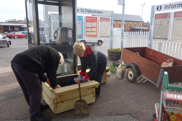 Planting the new planters