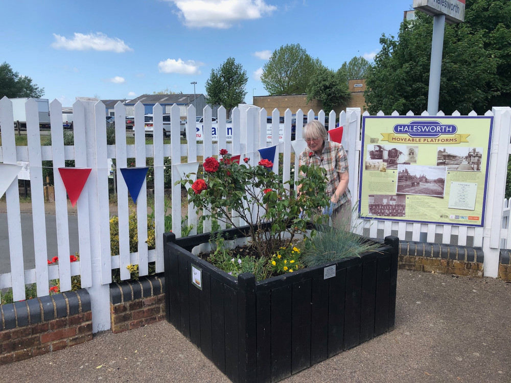 Halesworth Station planters 25 May 2020