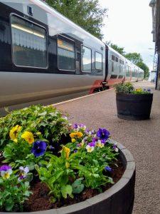 Flower tubs at Melton Station 1 September 2020