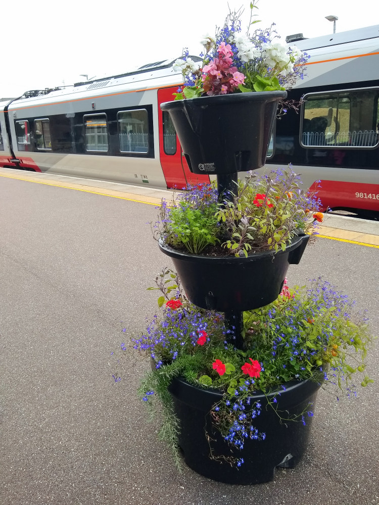 Beccles flowers 20 August 2021